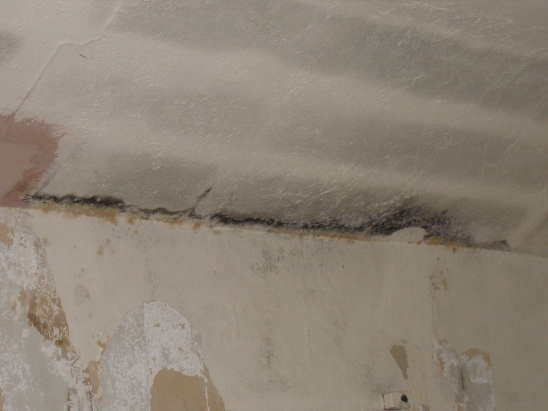 Damp proof your home
